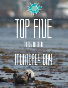 Top five things to do in Monterey Bay